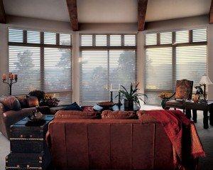 nuntucket easyrise livingroom window blinds