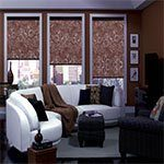 interior home roller shades